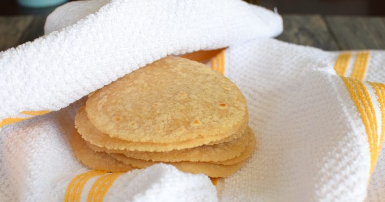 Nut Free Paleo Tortillas