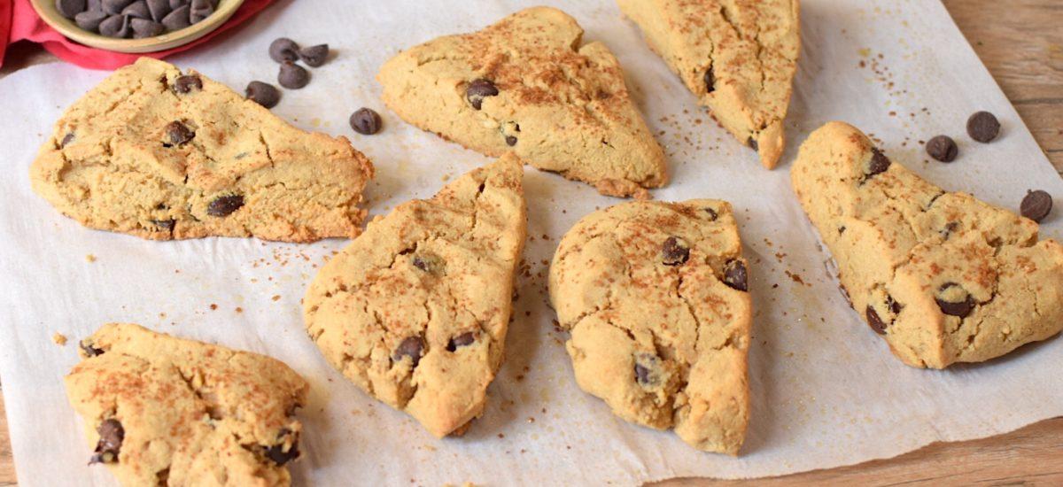 Paleo, Sugar-Free Chocolate Chip Scones – Anti-Candida