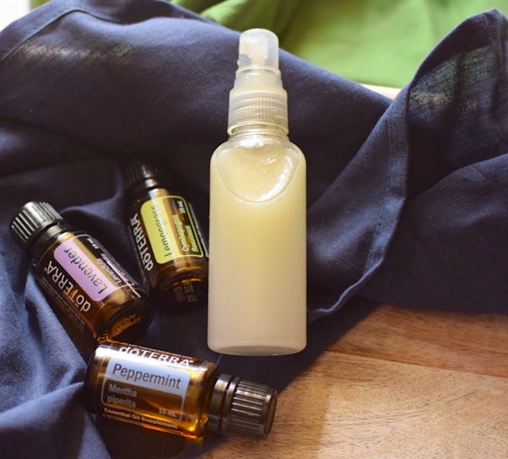 DIY Non Toxic Bug Spray